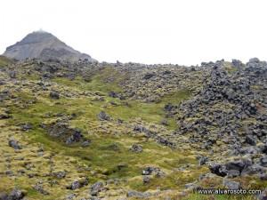 Rocas cubiertas de musgo cerca de Hellnar